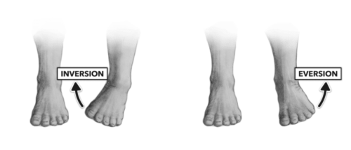 Rotex Motion: Ankle Inversion & Eversion