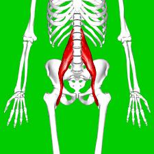 How To Stretch The Hip Flexor
